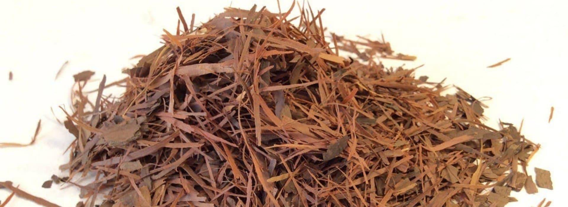 Кора муравьиного дерева (Пау Дарко)